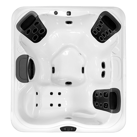 Bullfrog R6L Top View