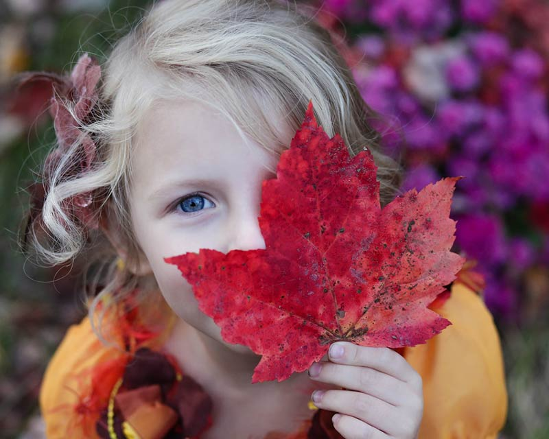 Autumn Specials